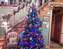 Possum Lodge Cabins - Photo of a Christmas tree at the cabin. We rent year round!